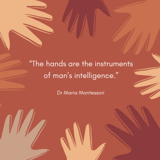 """""""The hands are the instruments of man's intelligence."""" Dr Maria Montessori. Surrounded by various child-sized hands."""