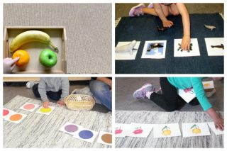 Children touching fruit in a tray, matching sea life objects to photos, working with colour nomenclature cards, and matching pairs of illustrations.